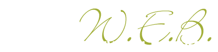 Women Executives in Business MN